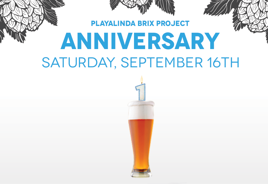 Brix Project One Year Anniversary