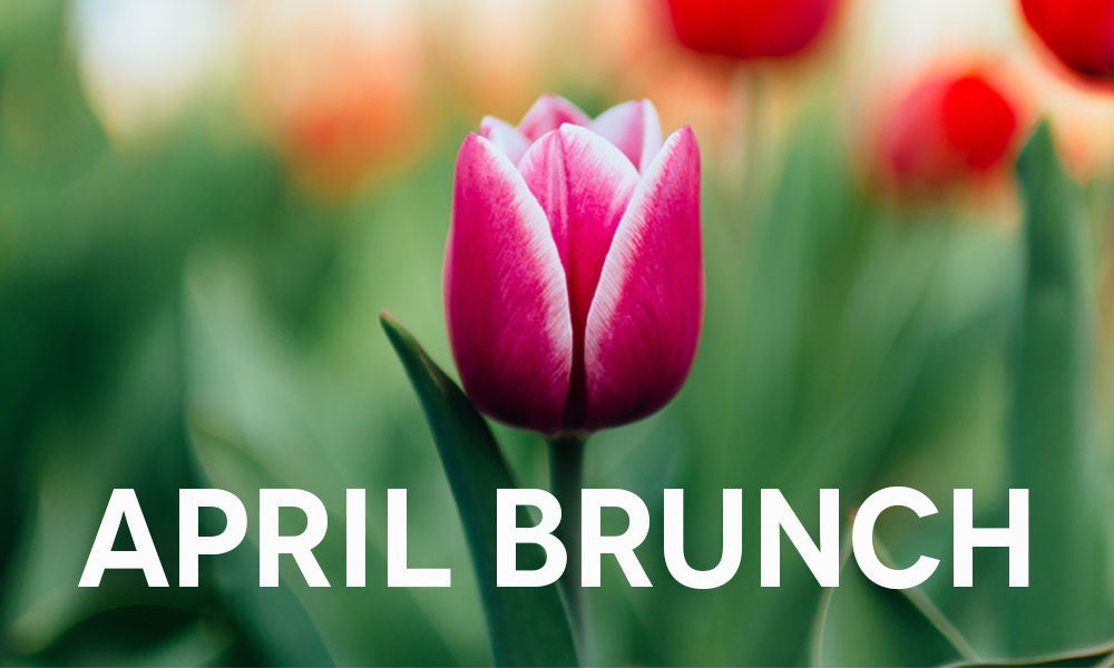 April Brunch at Playalinda Brewing Company - Brix Project